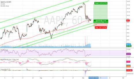 AAPL: Buying opportunity after correction