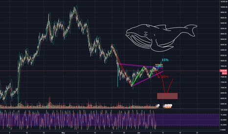 BTCUSDT: BTC/USD Bearish pennant overview WHALES?
