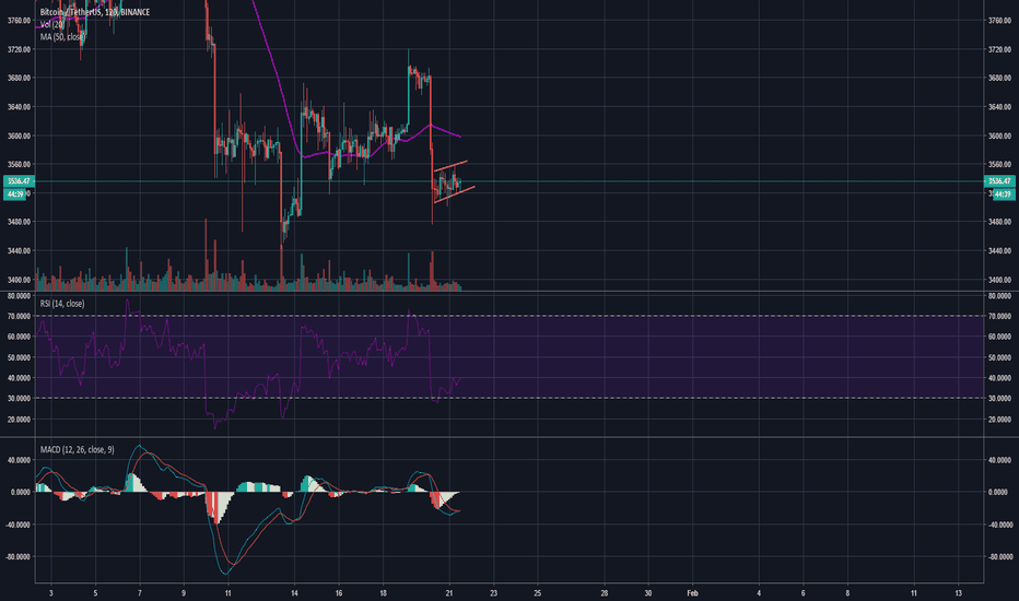 BTCUSDT: BEAR FLAG?