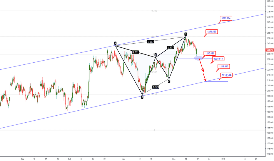 XAUUSD: Gold Forecast: Will Gold join the USD as a safe haven?