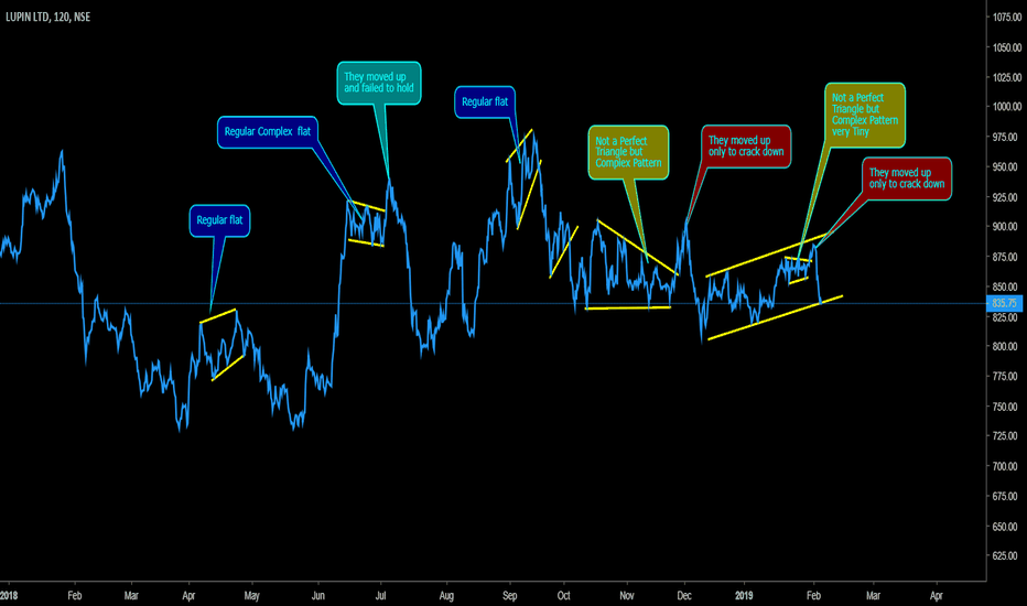 LUPIN: Market repeats it self (view by Professional)