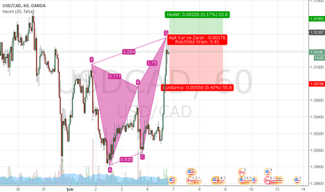 USDCAD: USDCAD H1 BEARİSH BUTTERFLY