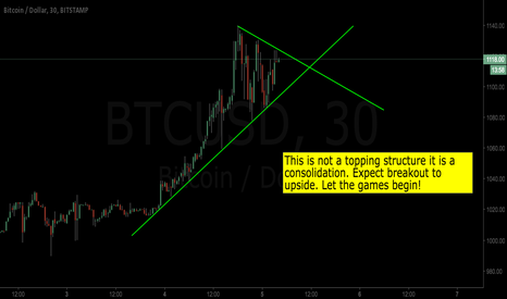 BTCUSD: Bitcoin bull continuation