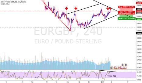 EURGBP: EURO POUND