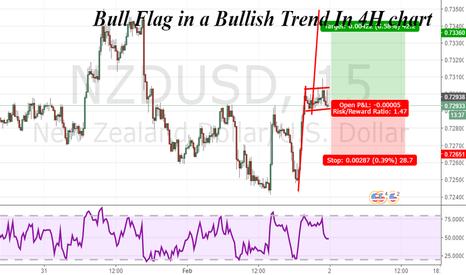 NZDUSD: Bull Flag