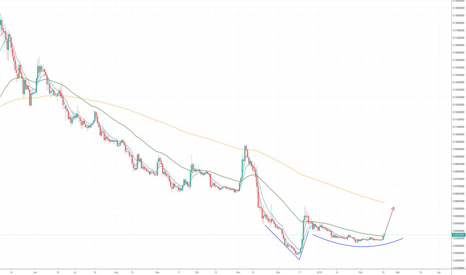 BCHBTC: Bitcoin Daily Update - Day 49 (0.3816 BTC)