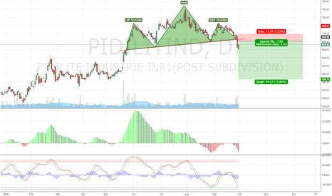 PIDILITIND: PIDILITIND H&S