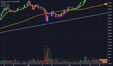 BTCUSD: An important flashback to a previous Adam and Eve Double bottom