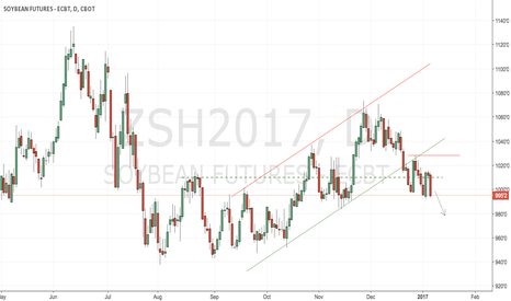 ZSH2017: CBoT soybeans