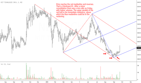 NIITTECH: NIIT Tech: Will the Blue Fork Take over?