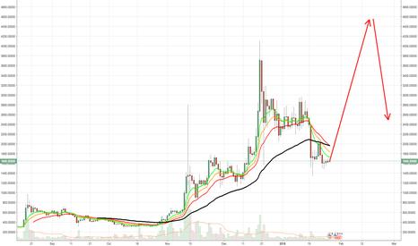 BCHUSD: bitcoin cash prediction