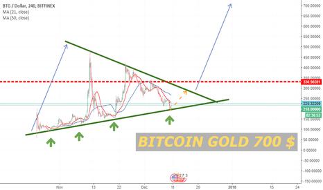 BTGUSD: Bitcoin Gold 700 $