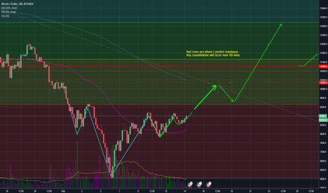 BTCUSD: Head and Shoulders finishing with a Cup and Handle.