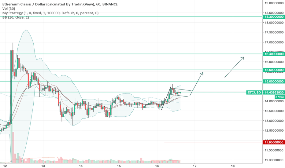 ETCUSD: ETC is forming a Bull Flag, 30% Profit Potential