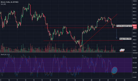 BTCUSD: BTCUSD Next hours by EC Holding Group