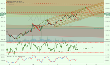 XAUUSD: Gold future prediction