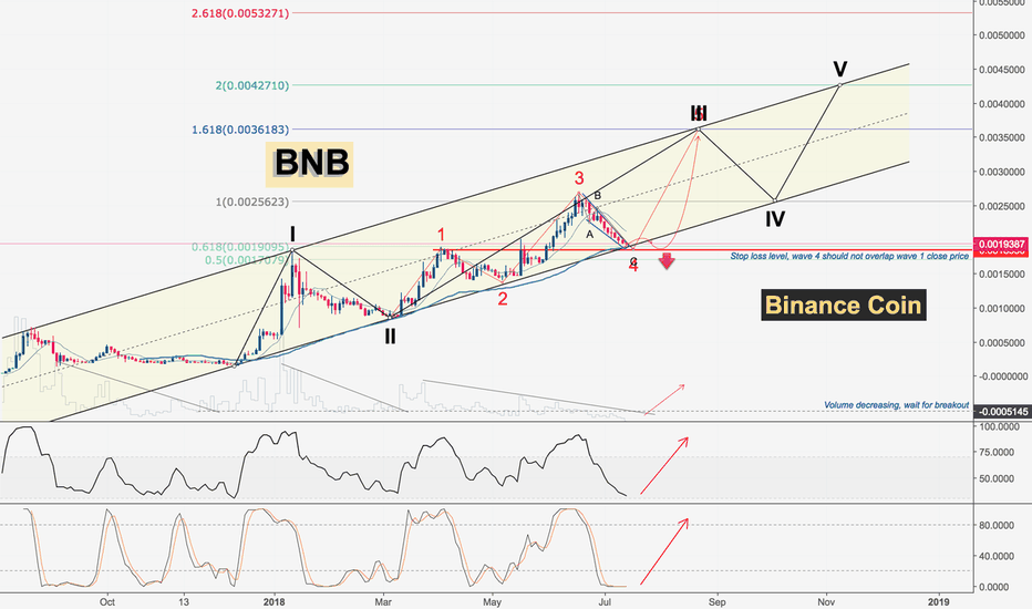 BNBBTC: Binance Coin | Elliot Waves Channeling
