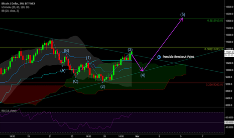 BTCUSD: Elliott Wave