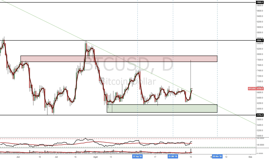 BTCUSD: BTCUSD - Spike = Price in?