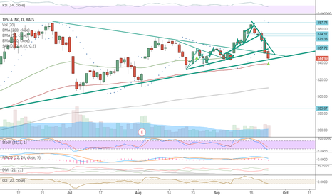 TSLA: TSLA reached support line, should continue trending long.