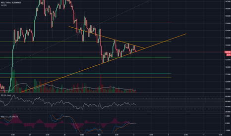 NEOUSDT: NEO Triangle Formation