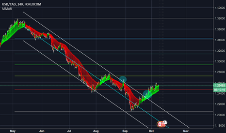 USDCAD: Does the USD Rally have Legs?
