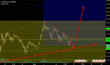 LTCUSD: LTC/USD растёт. Часовой график