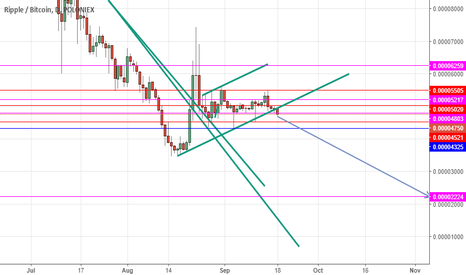 XRPBTC: XRP Sell below 5020 untill it reach to 2224 ( Longterm)