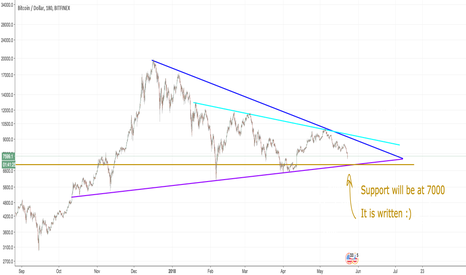 BTCUSD: $BTC will find support at $7000