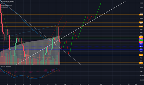 BTCUSD: Possible rebond sur support (downtrend) avant véritable Bullrun