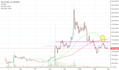 BCHUSD: BCH (Bitcoin Cash) Update !!!
