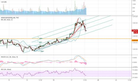 GOLD: bump and run chart