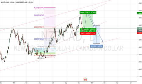 NZDCAD: Nzdcad in a short term bullish channel