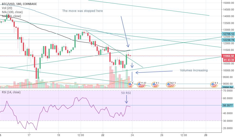 Bitcoin: bulls & bears fighting.