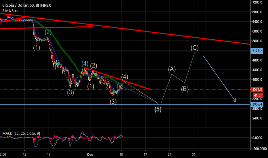 BTCUSD: BTC WAVE COUNT