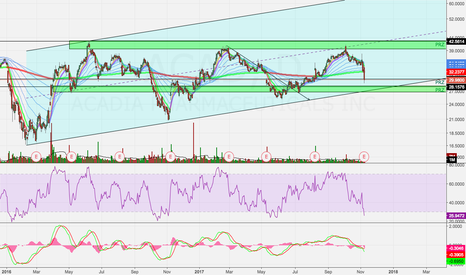 ACAD: ACAD At Potential Support Zone