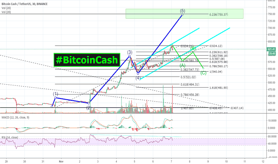 BCCUSDT: The ONLY reasonable TARGET | BULL RUN of 2018! | #BitcoinCash