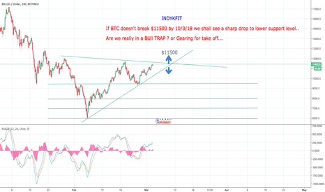 BTCUSD: Are we in a Bull Trap or Gearing up for a Surge?