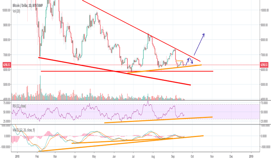 BTCUSD: BTC - a move after the VanEck ETF decision?
