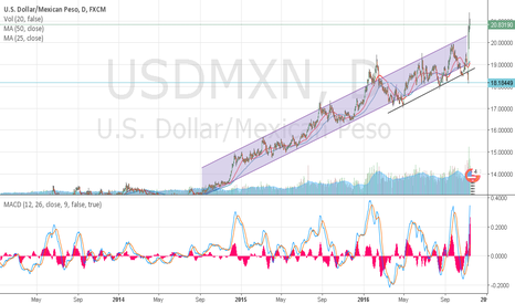 USDMXN: USD/MXN SINCE 1985