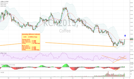 KCK2015: Bull market to COFFEE