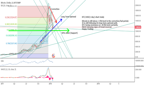 BTCUSD: BTC getting Ready for another ride ???