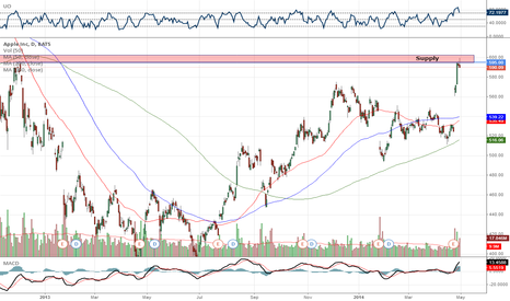 AAPL: APPL Short Position