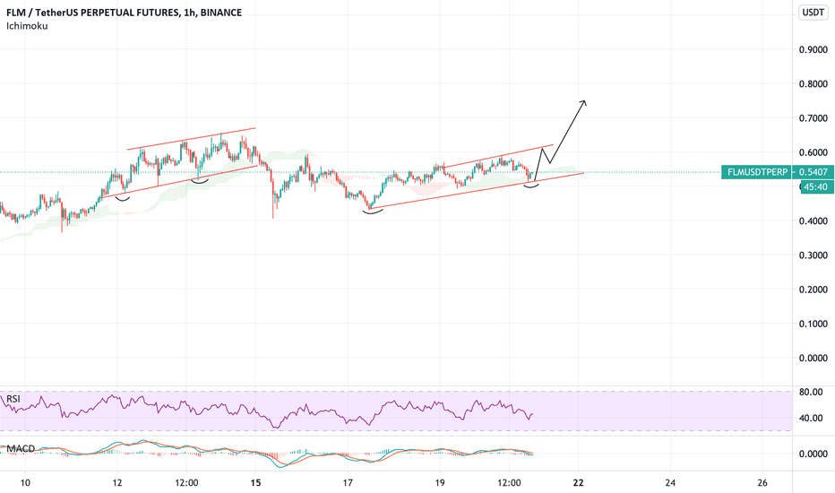 Flmusdtperp Charts And Quotes Tradingview