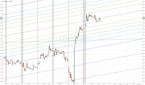CORN: Nice.. Corn Stalk Flag flying in the wind