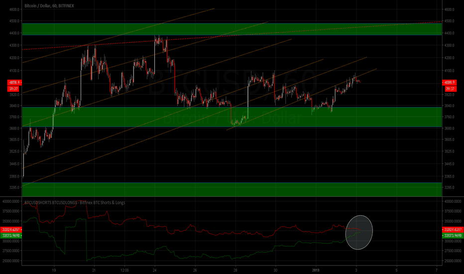 BTCUSD: [BTC/USD] Bitcoin long/shorts about to cross 2 reverse[BTFD-VIP]