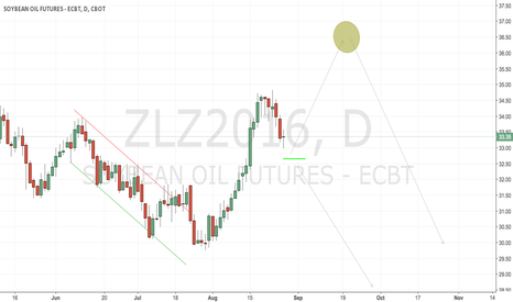 ZLZ2016: CBoT beanoil stopped out and waiting
