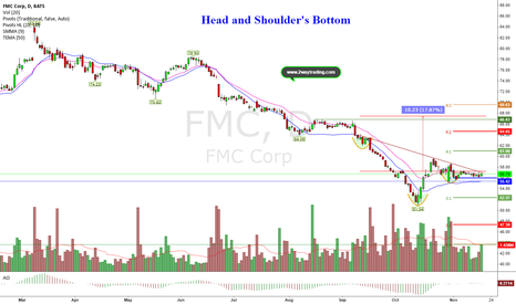 FMC: Not Great Company But Bullish Pattern Could mean alot