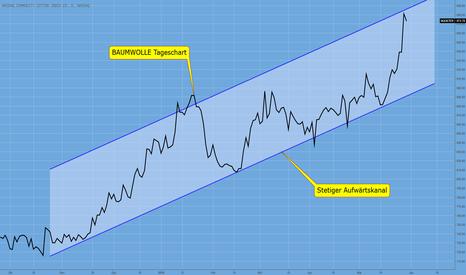 NQCICTER: BAUMWOLLE – Commodities im Kommen