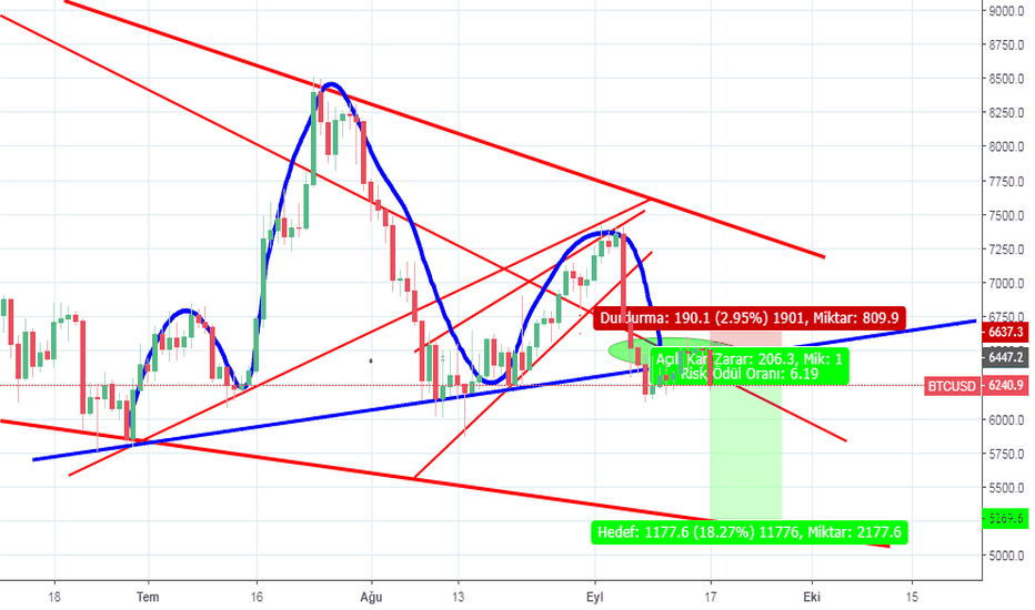 BTCUSD: Bitcoin/Usd daily Chart Short Position